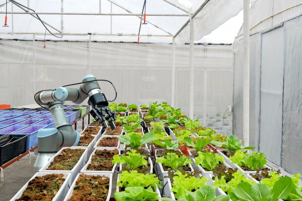 nowoczesne metody wykorzystywane w rolnictwie